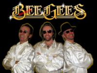 The Bee Gees tribute  (0)
