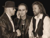 The Bee Gees tribute  (1)