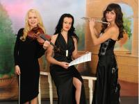 Trio cover band  (1)