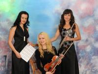 Trio cover band  (2)