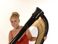 Harpist solo artist (5)