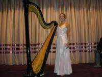 Harpist solo artist (1)