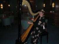 Harpist solo artist (3)