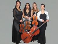 String Quartet Harmony strings