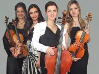 String Quartet Harmony strings (2)