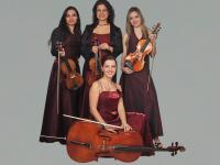 String Quartet Harmony strings (3)