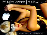Lady Gaga tribute (0)