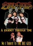 Bee Gees and Jersey Boys tribute  (1)