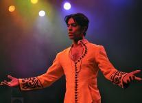 Prince tribute  (0)