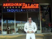 Elvis lookalike tribute   (3)