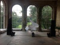 Elton John tribute  (4)