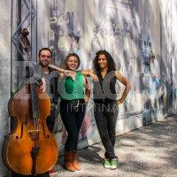 Cover band Trio (1)