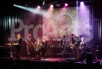 Fleetwood Mac tribute  (1)